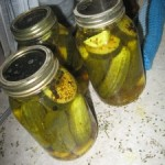 Survival Skill – Pickling