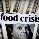 The Next Food Crisis Will Be Caused By Globalist Land-Grabs and Privatization