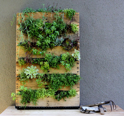 vertical-planter