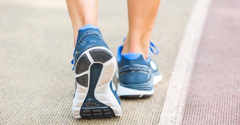Survival Fitness - Walk the Walk