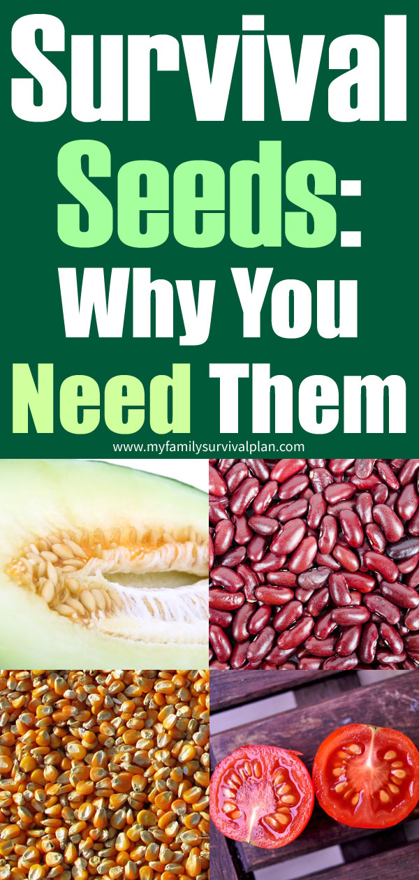 Survival Seeds Why You Need Them