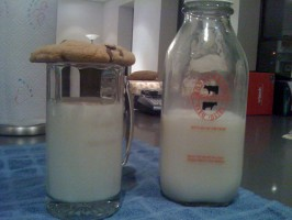 What-is-the-Best-Kind-of-Milk-for-Food-Storage