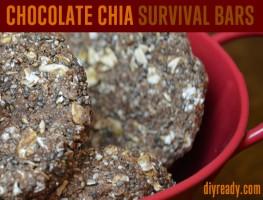 Chocolate-Chia-Survival-Bars
