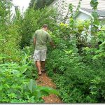 Preppers, Get Ready For Secret Gardening!