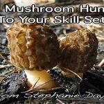 Add Wild Mushroom Hunting To Your Skill Set
