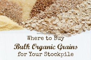 Where-to-Buy-Bulk-Organic-Grains-for-Your-Stockpile