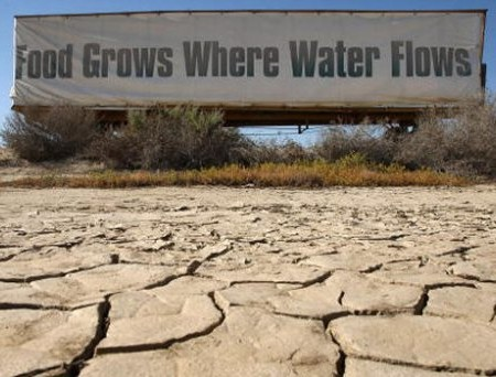 food grows where water flows