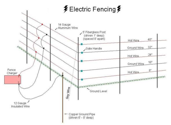 My Family Survival Plan Archives: Domestic Electric Fence Wiring Diagram At Imakadima.org