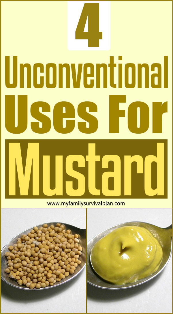4 Unconventional Uses For Mustard