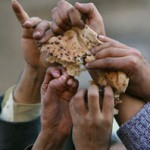 The Hunger Wars In Our Future: Heat, Drought, Rising Food Costs, Global Unrest