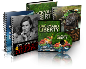 Backyard liberty book