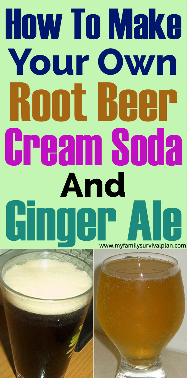 How To Make Your Own Root Beer, Cream Soda And Ginger Ale