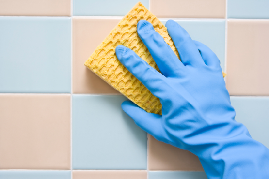 Porcelain and Tile Cleaners