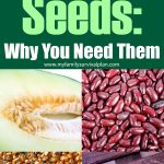 Survival Seeds: Why You Need Them