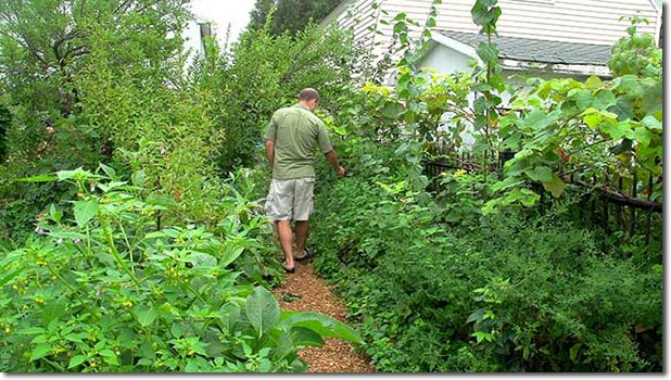 Preppers, Get Ready For Secret Gardening