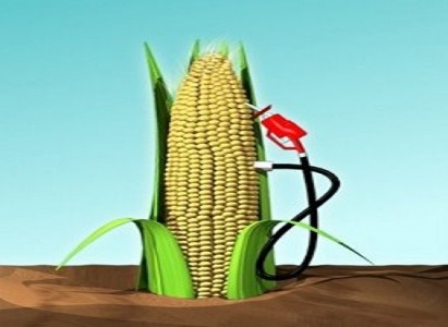 corn fuel