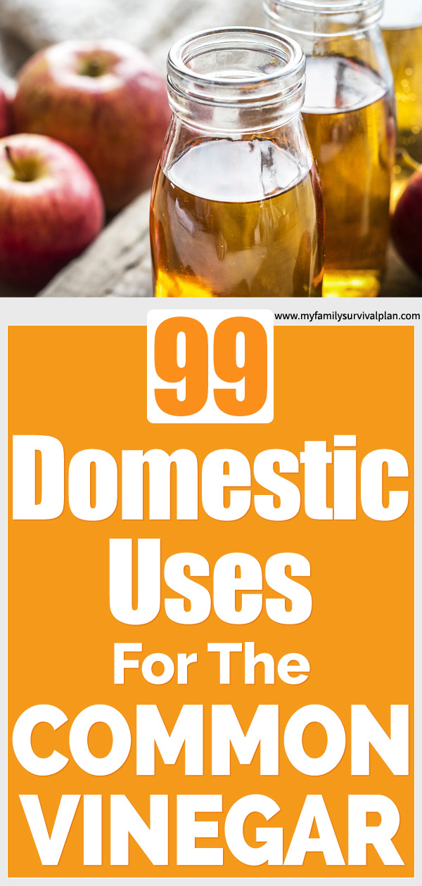 99 Domestic Uses For The Common Vinegar