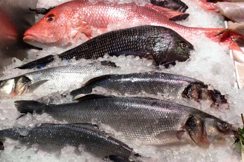 5 Most Nutritious Fish Found In The USA