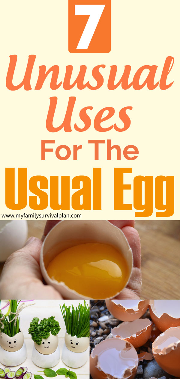 7 Unusual Uses For The Usual Egg