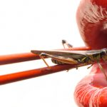 Amazing: Insects Solving World Hunger